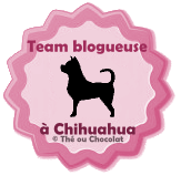 template-macaron-blog-chihuahua-3.png