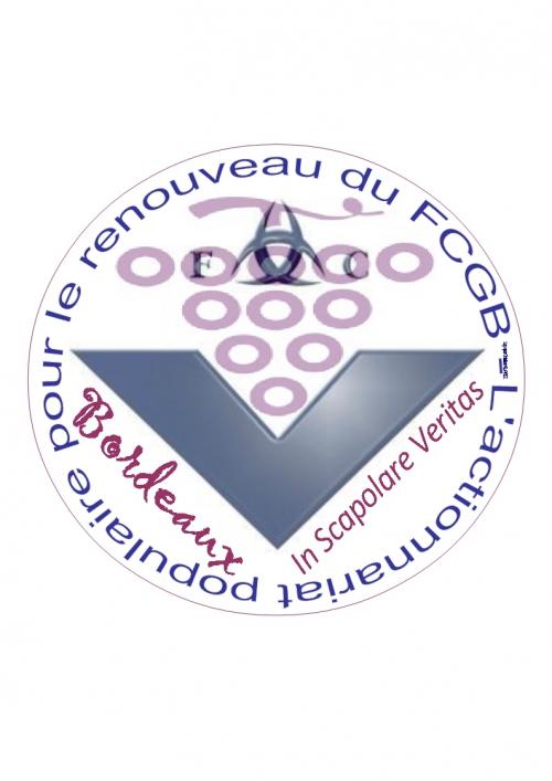 Logo 10 (Association - In Scapolare Veritas - version définitive).jpg