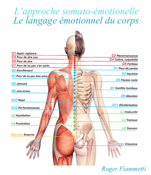 langage emotionnel du corps.jpg