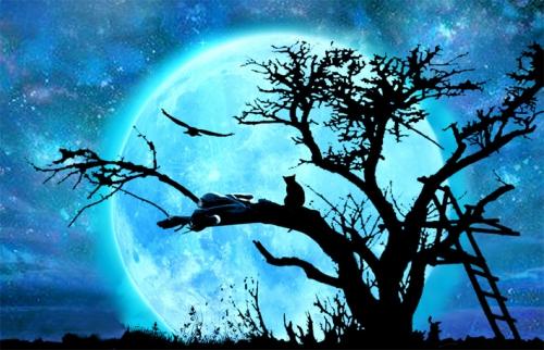 lune pt.jpg
