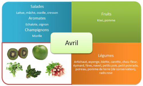 fruits-et-legumes-printemps-avril.png