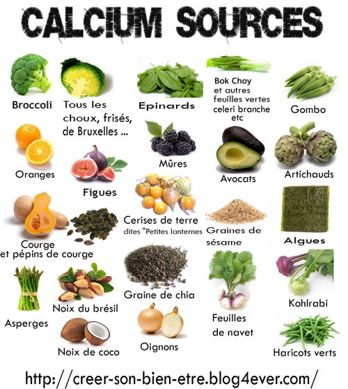 Calcium sources.jpg