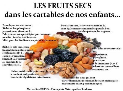 fruits secs.jpg