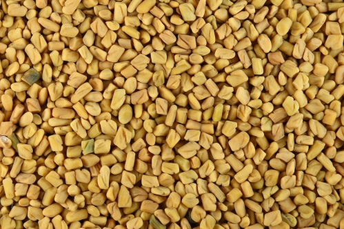 Fenugreek_seeds.jpg
