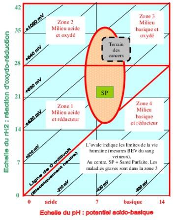 schema_bioelectronigramme2.jpg