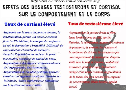 TESTOSTERONE CORTISOL b.jpg