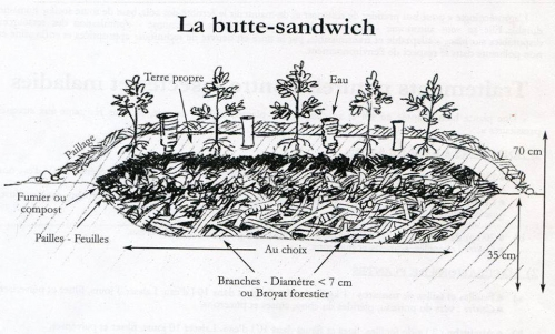 permaculture1.jpg