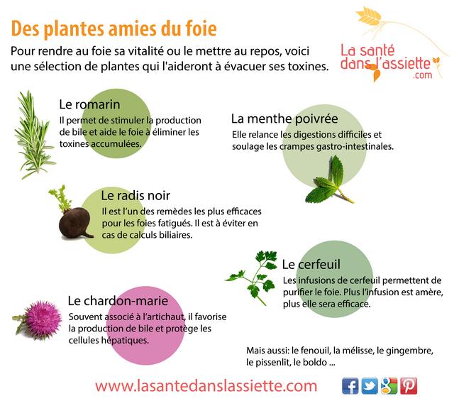 plantes-foie.png
