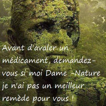 dame nature.jpg