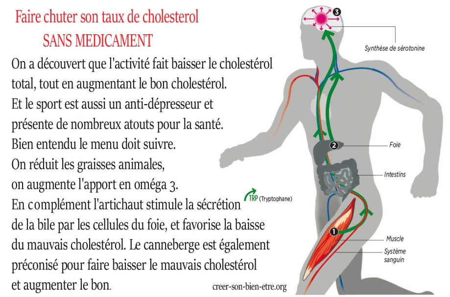 cholesterol.jpg