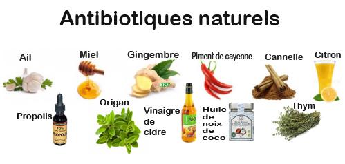 antibio1.jpg