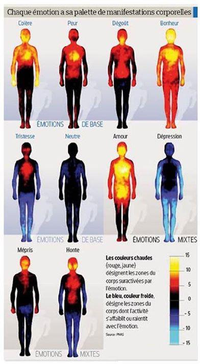 émotion localisées 1.jpg