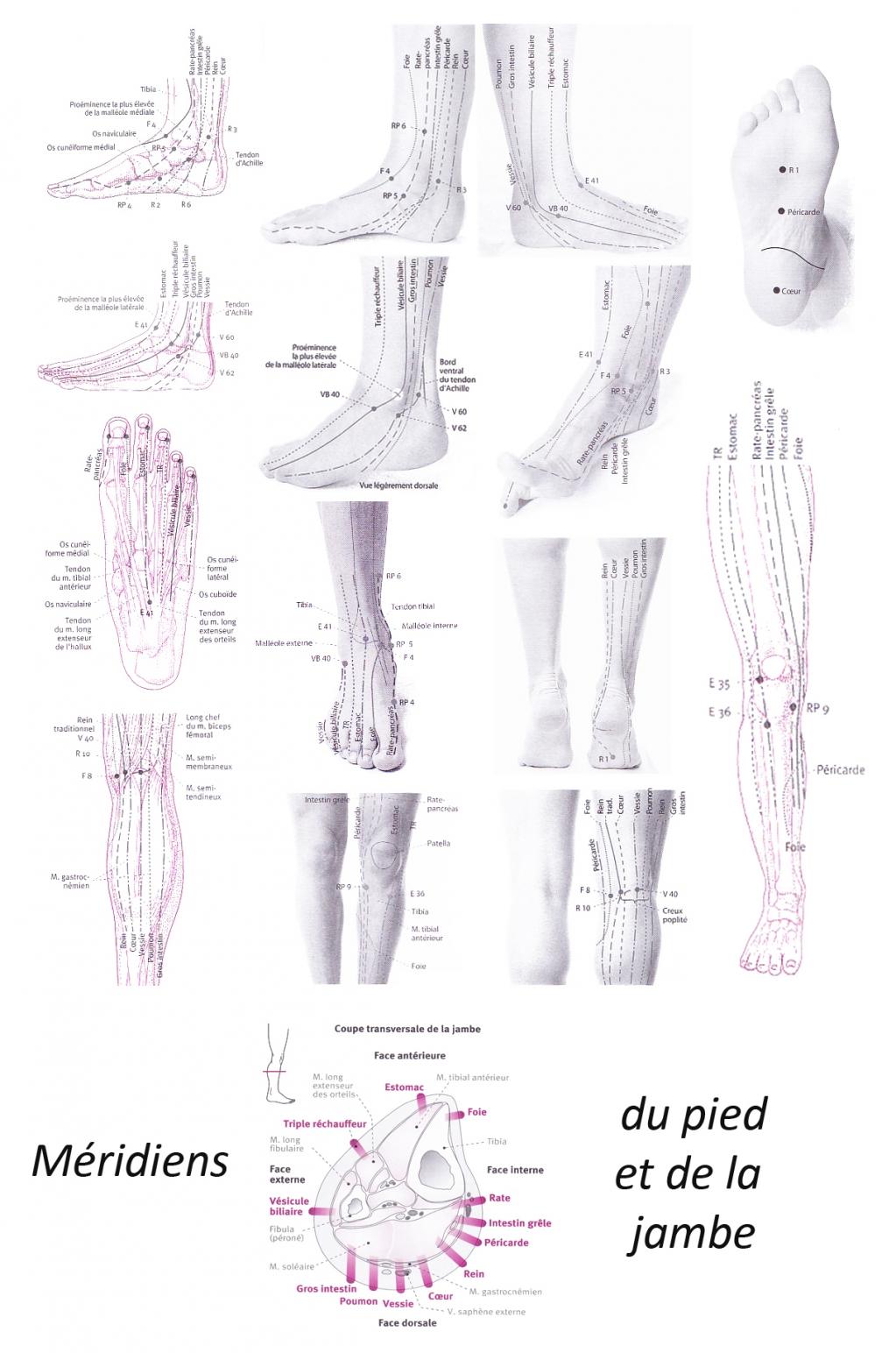 Comme guérir longle paré sur le pied