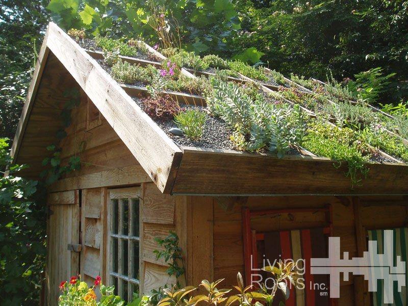 se reconnecter avec la nature en route pour le changement bien tre sant relaxation. Black Bedroom Furniture Sets. Home Design Ideas