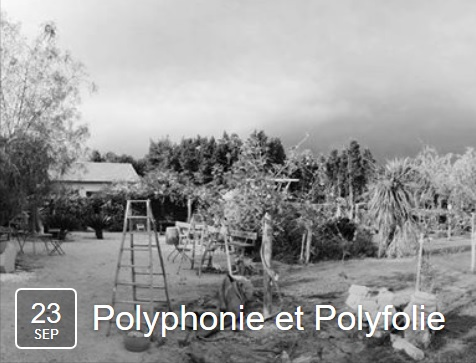 Polyphonie.jpg