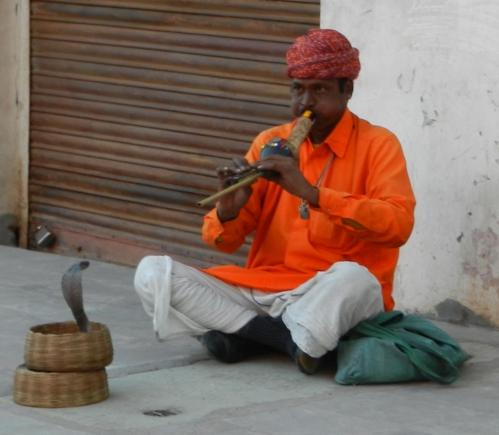 Voyage en Inde 384.JPG