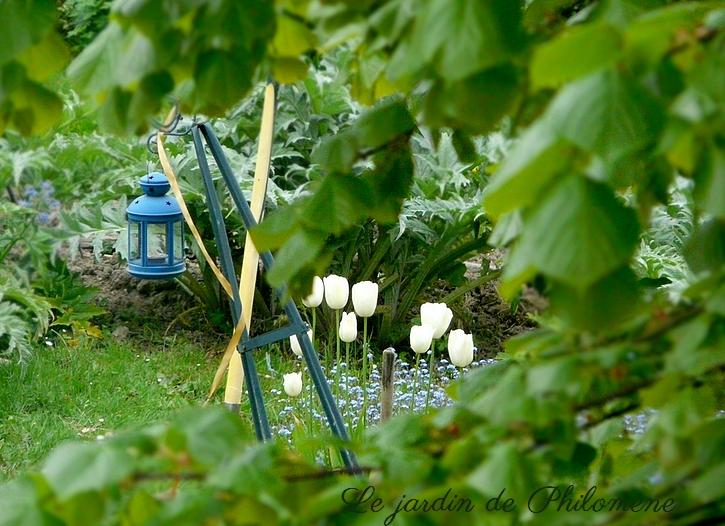 travux-jardin-tulipes1.jpg