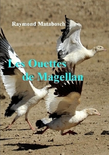 Les Ouettes de Magellan.jpg