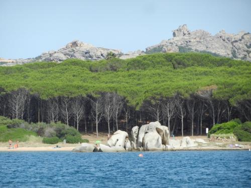 Voyage Sardaigne 043.JPG