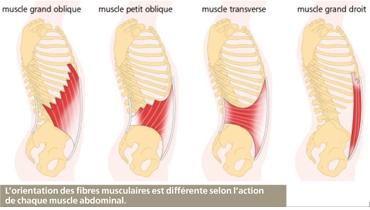 Douleurs bas ventre et dans les lombaires : colite