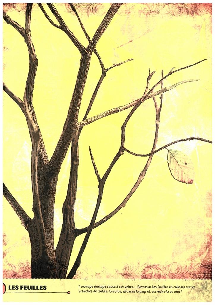 arbres (724x1024).jpg