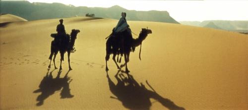 VisEd-Lawrence-of-Arabia-Wide-Screen-camels.jpg