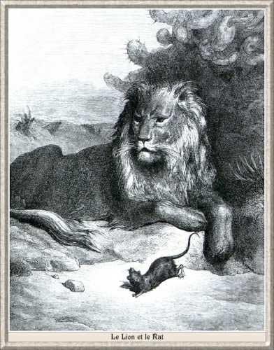 LionRat2.jpg