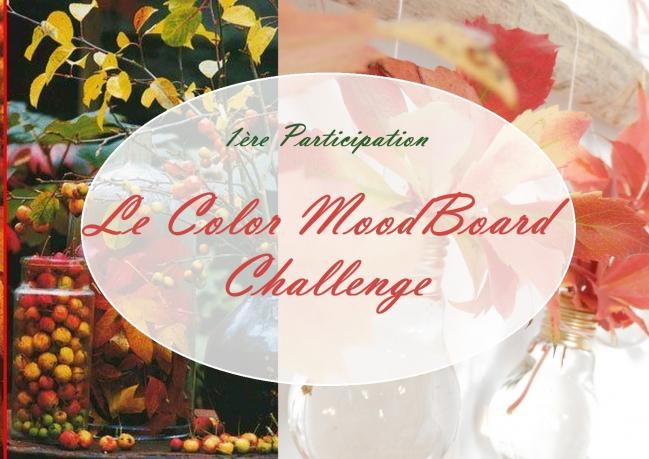 Color Moodboard challenge - Copie.jpg