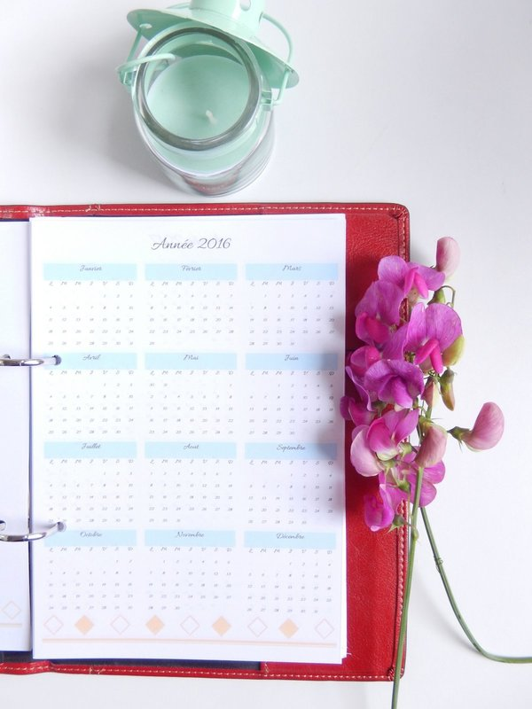 agenda 2016 / 2017 format a5 free printable