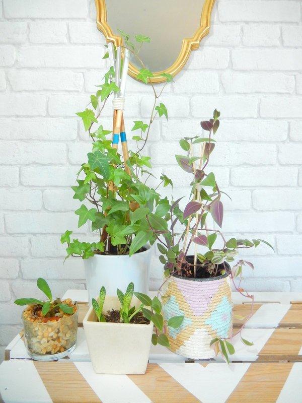 diy un tuteur façon tipi pour plantes grimpantes 2