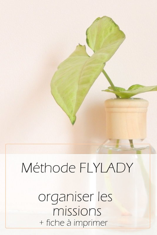 methode flylady organiser les missions 1