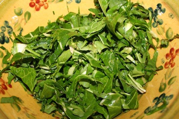 salade de printemps sauvage (2).jpg