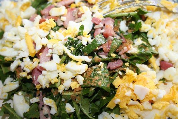 salade de printemps sauvage (5).jpg
