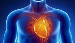 Le coeur.PNG