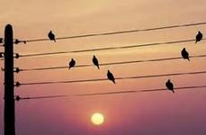 Musique.PNG
