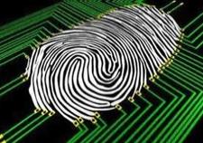 Mégafichier biométrique.PNG