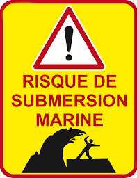 SUBMERSION MARINE.png