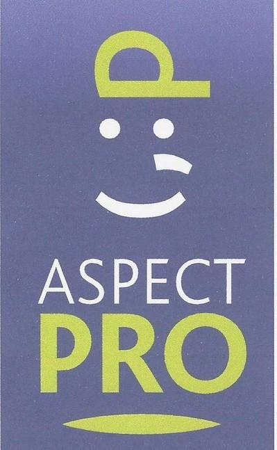 logo aspect pro. - Copie.jpg