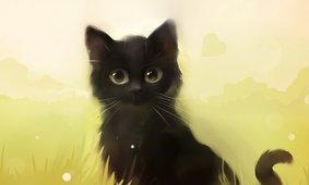 378664__cat-by-apofiss_t.jpg