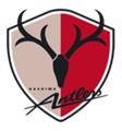 Kashima Antlers.png