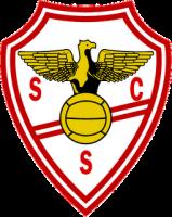 SC Salgueiros.png