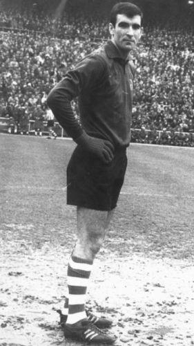 José Angel Iribar.jpg