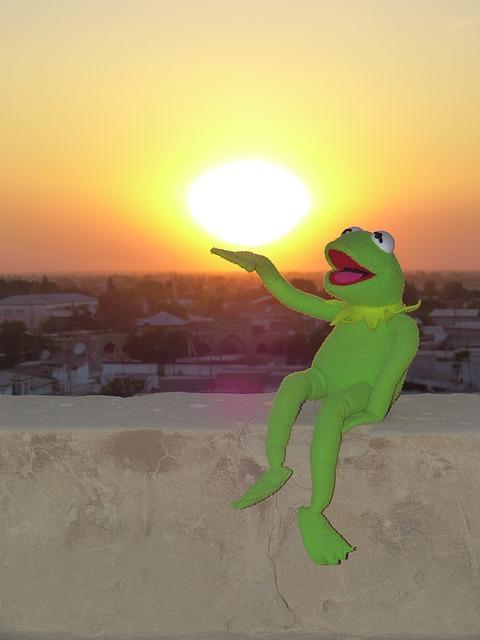 marionnette grenouille tenant soleil couchant