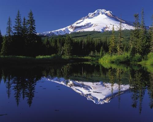 paysage- montagne enneigée
