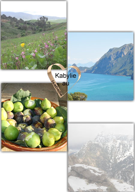 http://static.blog4ever.com/2015/02/795987/kabylie-printemps---t---automne--hiver.png