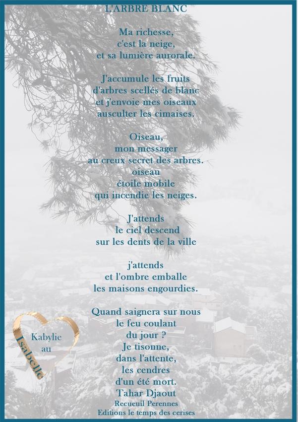 http://static.blog4ever.com/2015/02/795987/l--arbre-blanc-Tahar-Djaout.jpg