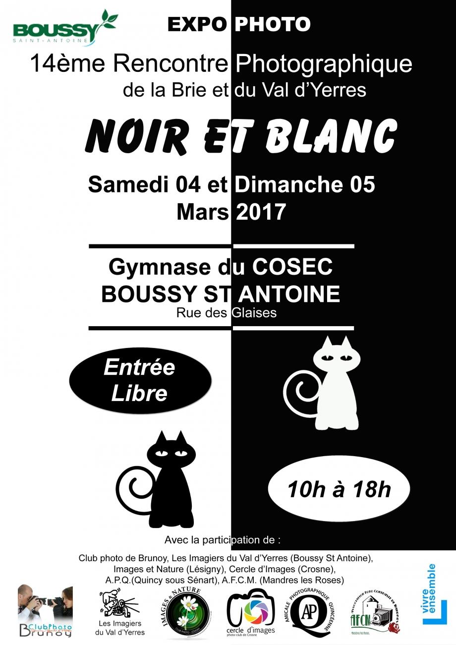 2017-03-04 et 05 Affiche expo Interclub Boussy Les Imagiers.jpg