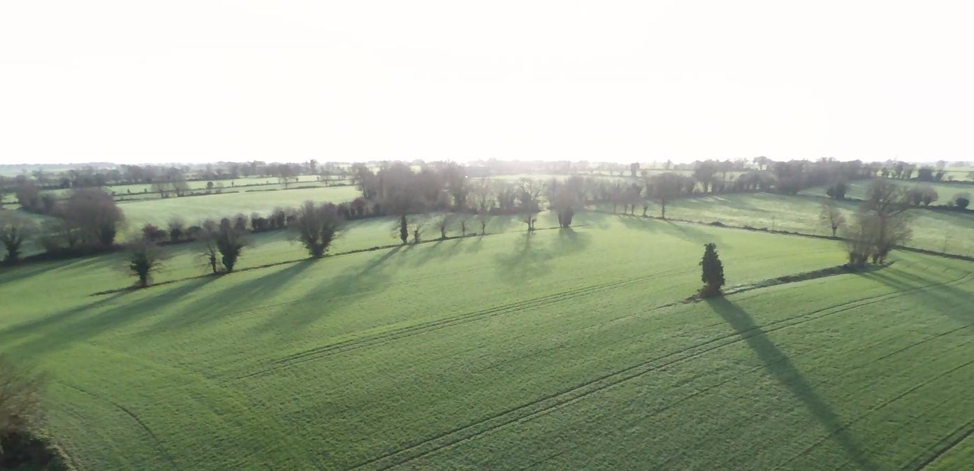 L'aventure de la permaculture en Mayenne - Mes racines ont des ailes