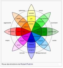 espace de thérapies émotionnelles nicole pierret les mécanismes des émotions.JPG