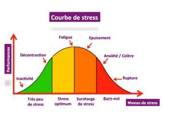 espace de thérapies émotionnelles nicole pierret les causes des troubles anxieux.JPG